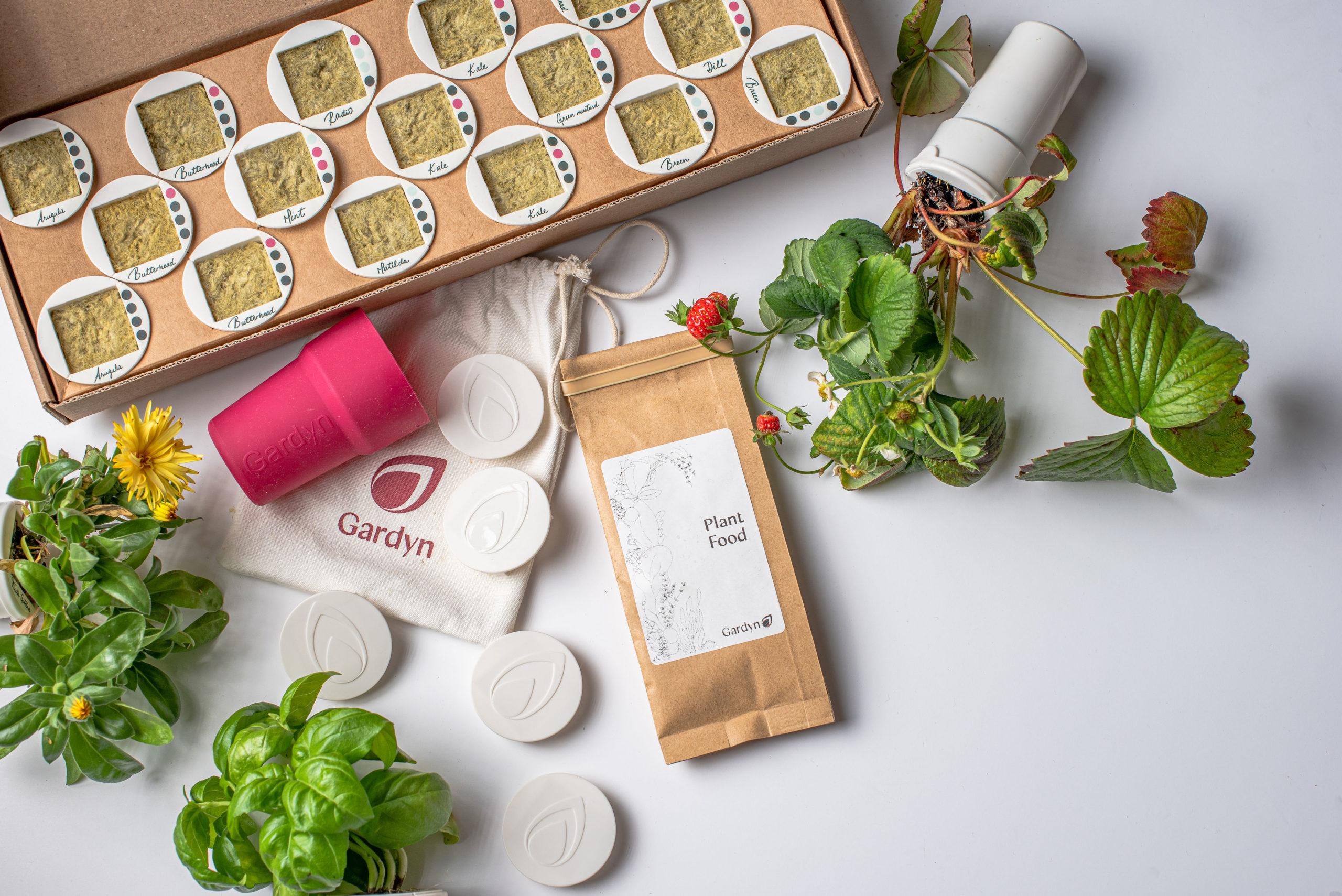 5 ways the Gardyn Starter Kit will rock your tastebuds and boost brain function